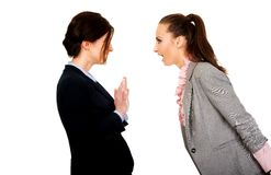 Two angry businesswomans. Stock Photos