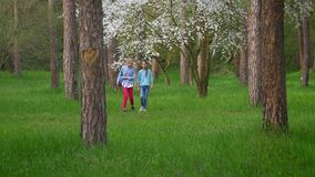Two appealing little Teen girlfriend walk in Park, teenage female friends having fun smiling with guitar in hand. Two appealing little Teen girlfriend walk in stock video