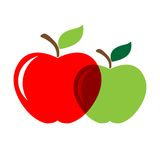 Two appels. Two apples red and green in vector Royalty Free Stock Image