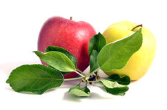 Two apple. With leaves, isolated on white background Stock Photo