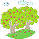 Two apple trees Stock Image