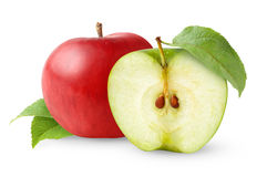 Two apples Stock Photos