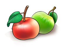 Two apples. Illustration of two apples on white background Stock Photo