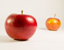 Two apples Stock Photography
