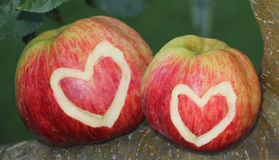 Two apples with heart symbol Stock Images