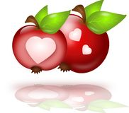Two apples with hearts Royalty Free Stock Photography