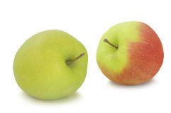 Two apples isolated on white background Royalty Free Stock Photography