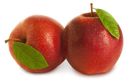 Two Apples with leaves Royalty Free Stock Photography