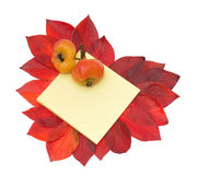 Two apples on notebook and heart of red leafs Stock Images