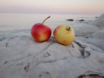 Apples on the shore stock photos