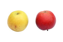 Two apples on white Royalty Free Stock Photos