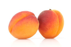 Two apricots Stock Images