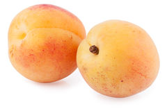 Two apricots isolated cutout Stock Images