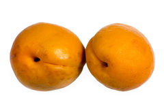 Two apricots isolated Royalty Free Stock Images