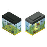Two aquariums in isometric projection. Vector illustration Royalty Free Stock Photography
