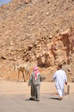 Two arab men and camel walking Royalty Free Stock Photo