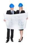 Two Architects Looking At Blueprint Royalty Free Stock Photography