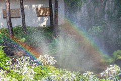 Two arcs of rainbow in blooming summer garden. Two right halves of the rainbow arc over the white colors of the host in a well-kept park on a summer day Royalty Free Stock Photo