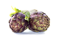 Two artichokes Stock Photography