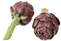 Two artichokes Royalty Free Stock Photography