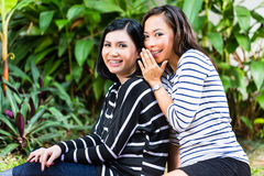 Two Asian girlfriends Royalty Free Stock Photos
