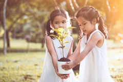 Two asian little child girls holding young tree in pot together Stock Photos
