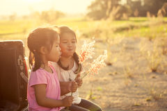Two asian little girl playing and blowing grass flower together Royalty Free Stock Images