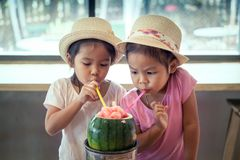 Two asian little girls are drinking watermelon blended juice Stock Photos