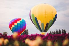 Two Assorted Color Hot Air Balloons Stock Photo