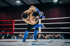 Two athletes are fighting MMA in ring Stock Photos