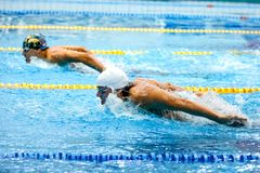 Two athletes swimmers swim butterfly stroke in pool. Chelyabinsk, Russia - March 13, 2018: two athletes swimmers swim butterfly stroke in pool during Royalty Free Stock Photos