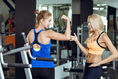 Two athletic blond women talking in the gym. Girl communicates with trainer. Two athletic blond women talking in the gym. Girl communicates with the trainer Stock Photography