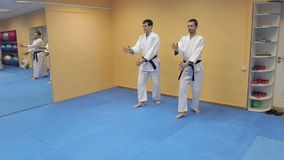 Two athletic men demonstrate techniques of Aikido. Two athletic men demonstrate the techniques of Aikido stock video
