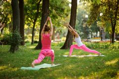 Two athletic women doing yoga exercises on the grass in a park royalty free stock image