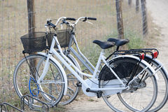 Two attached bicycles near the beach Royalty Free Stock Photos