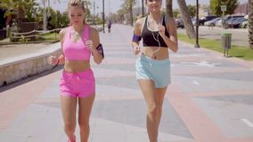 Two attractive athletic young women jogging. Two attractive athletic young women in trendy sportswear out jogging together along a tropical promenade in a stock video footage