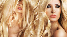 Two attractive blond ladies in a beauty salon Stock Photos