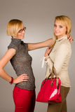 Two attractive blonde girls studio portrait Stock Images