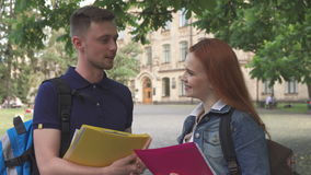 Two students talks on campus stock video
