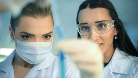 Two attractive female scientists studying test tube in laboratory stock video