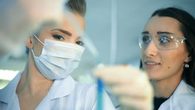Two attractive female scientists studying test tube in laboratory stock footage