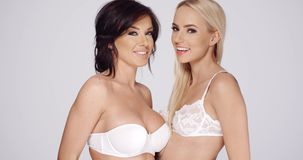 Two attractive sexy lingerie models. Wearing different styles of white bra posing together smiling at the camera  over white stock video footage