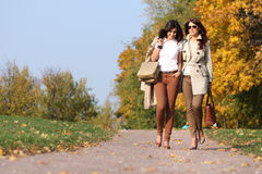 Two attractive women with autumn maple leaves in park at fall ou Royalty Free Stock Photos