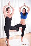 Two attractive women doing their workout Royalty Free Stock Photo