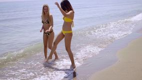 Two attractive women strolling along a beach. In their bikinis chatting and laughing as they enjoy a summer vacation at the seaside stock video