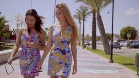 Two attractive women walking along a promenade stock video footage