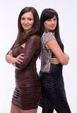 Two attractive women Stock Images