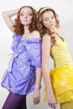 Two attractive young women Stock Images