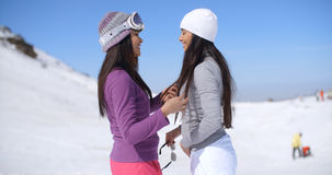 Two attractive young women chatting in the snow Royalty Free Stock Image