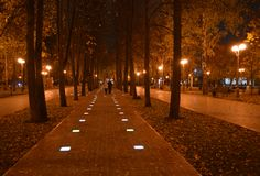 Two autumn evening walk in the park. Two people walking in the park in autumn evening Royalty Free Stock Photo